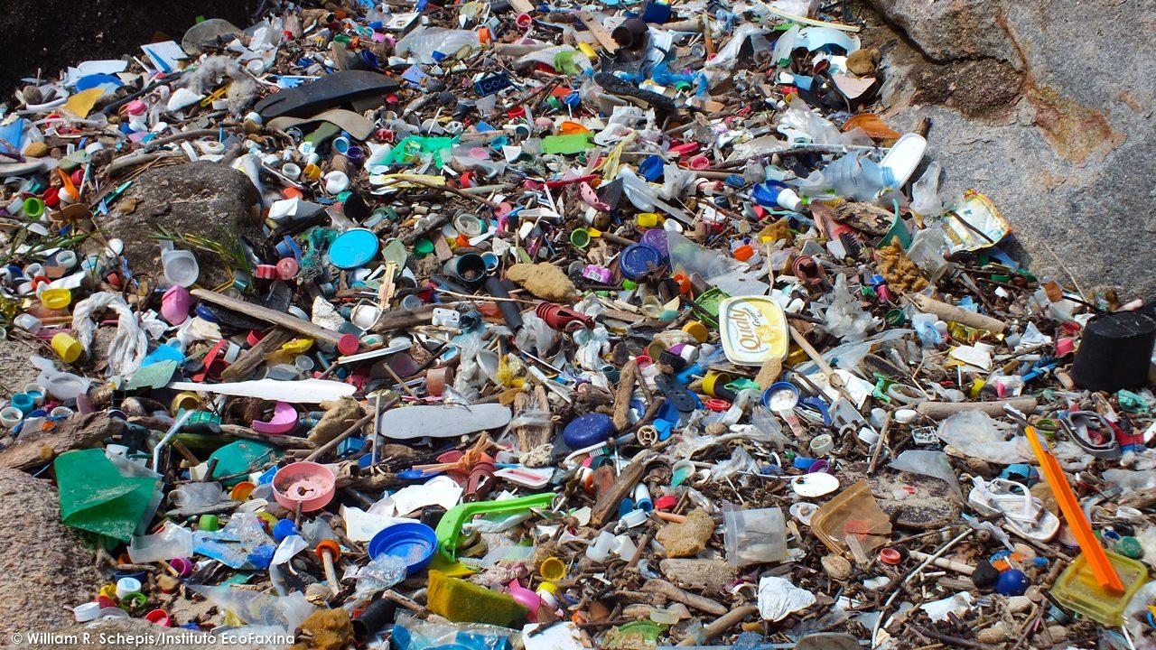 O mar se tornou uma sopa de plástico e o material se acumula em praias e costões rochosos da Baixada Santista. A foto acima mostra uma área de costão rochoso na praia do Saco do Major, em Guarujá. Os impactos que o plástico descartado no manguezal gera sobre os ecossistemas marinhos da região são extremamente prejudiciais não só para a vida marinha, mas também para o turismo.