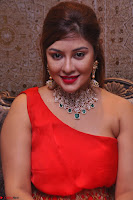 Payal Ghosh Looks Stunning in Red Half Shoulder Gown 016.JPG
