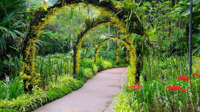Garden Botanical Singapore