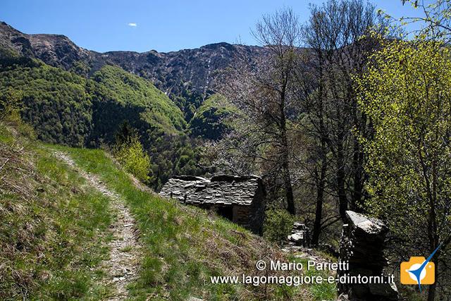 Sentiero alpe Cortetti Monteviasco