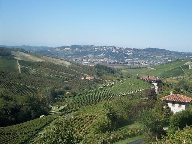 Italian wine blogger