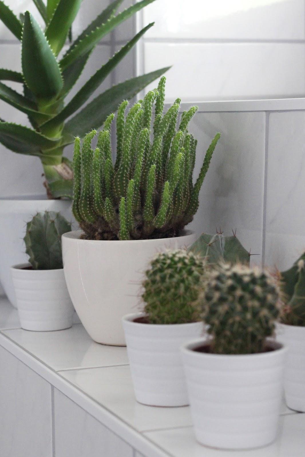 Interior | Tipps für ein organisiertes Badezimmer | www.sparklyinspiration.com
