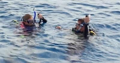 Open Water - A mar abierto - Submarinismo en el cine - Scuba dive - el fancine - Cine y deporte - ÁlvaroGP SEO