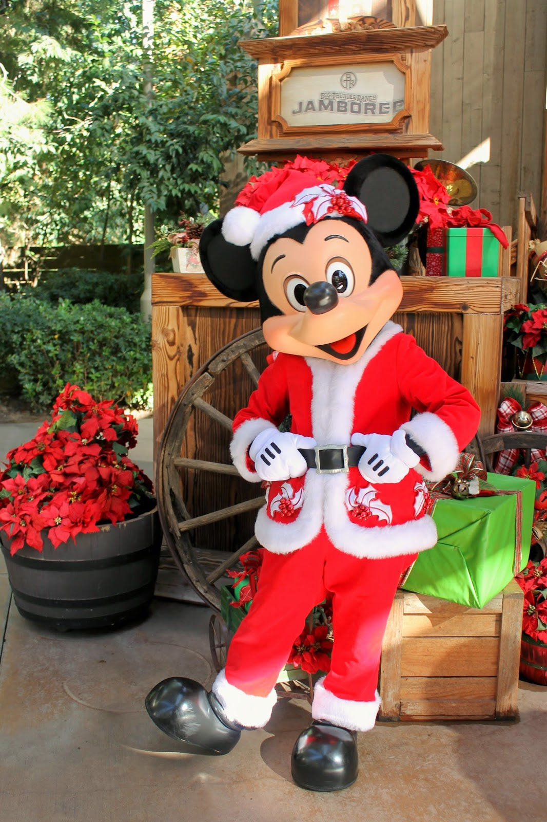 Unofficial Disney Character Hunting Guide: Jingle Jangle ...