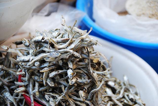 Ikan Teri cegah Osteoporosis