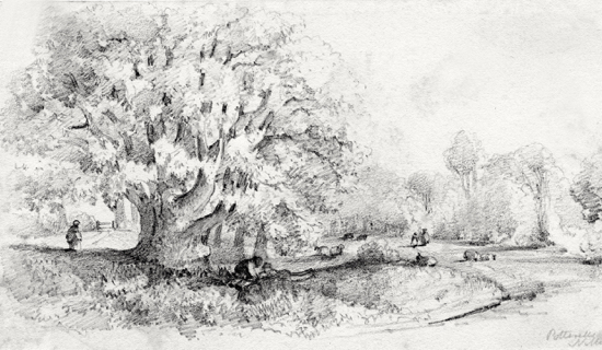 Potterells Park c1850's Pencil drawing attributed to Mrs Frances Ruth Faithfull but possibly by Rev James Faithfull. Peter Miller Collection