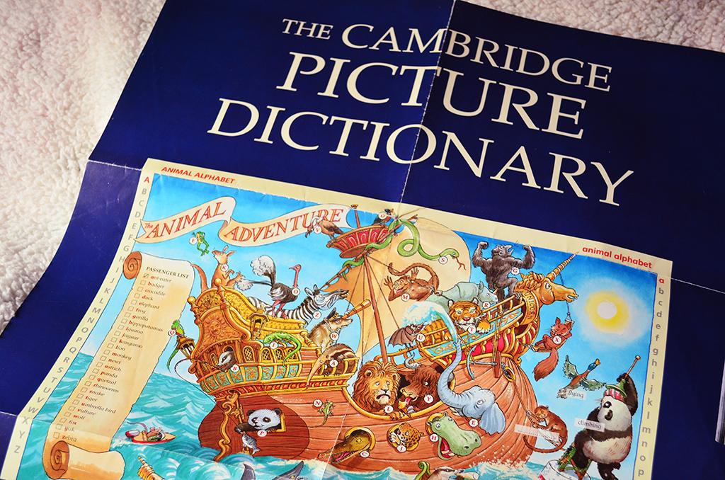 cambridge animal adventure cum am invatat limba engleza