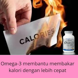 Minyak Ikan Omega-3 Membantu Menurunkan Berat Badan
