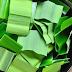 Tips Mengatasi Komedo Secara Alami dengan Daun Pandan