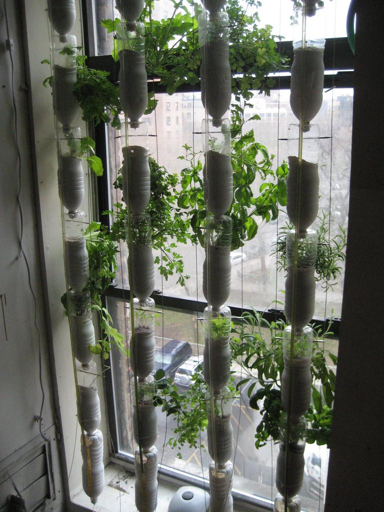 Jard n vertical con botellas recicladas v deo jardines - Jardin vertical en casa ...