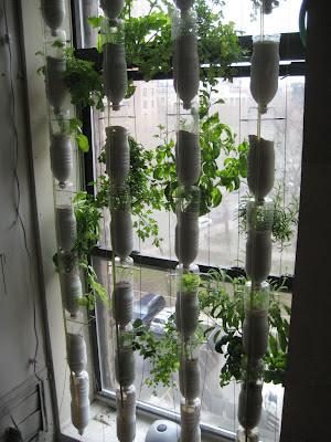 Resultado de imagen de jardin vertical casero con botellas