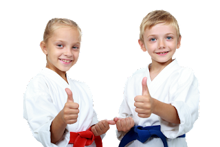 Best Children Martial Arts And Karate Lessons Online What Martial