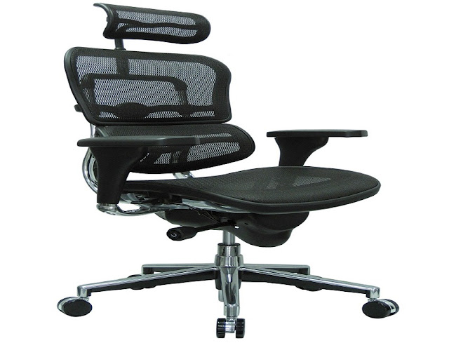 best buy ergonomic office chair lower back support for sale