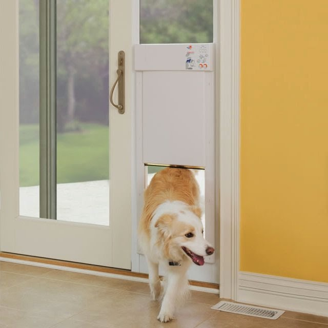 Electronic Dog Door