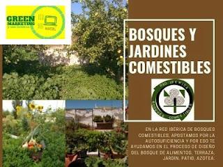 Bosques Comestibles en la plataforma de contenidos de ECO SEO Green Marketing