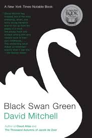 the portrayal of adolescence in david mitchells novel black swan green