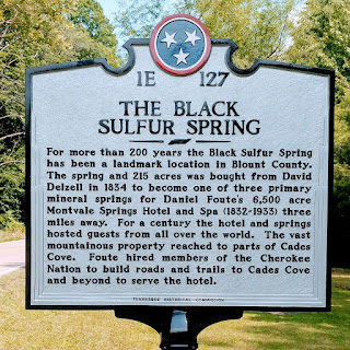 Sign with historical background for The Black Sulfur Spring