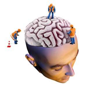 El Arte De La Estrategia Neuromarketing Atrapados Por