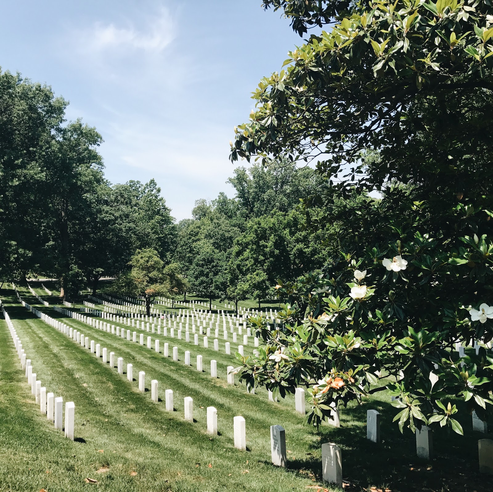 Arlington National Cemetary | A Weekend in DC