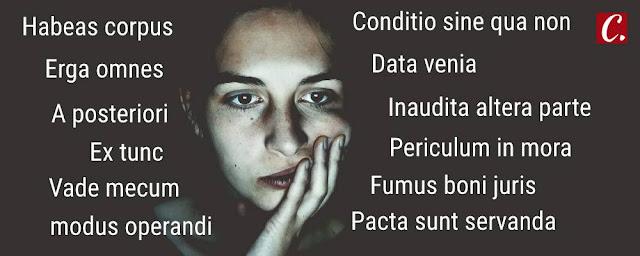 ambiente de leitura carlos romero saulo mendonca abuso do latim expressoes latim latinizacao rebuscamento