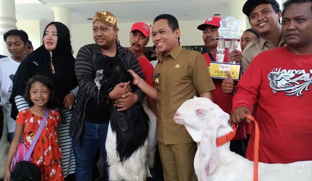 Bupati berfoto bersam kambing yang menjadi juara di Piala Presiden