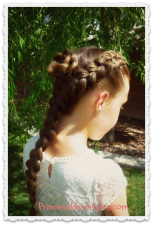 dutch braid rosette hairstyle tutorial