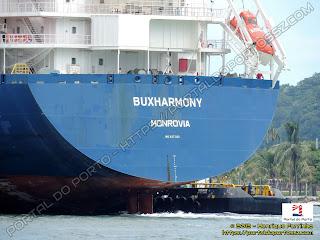 Buxharmony