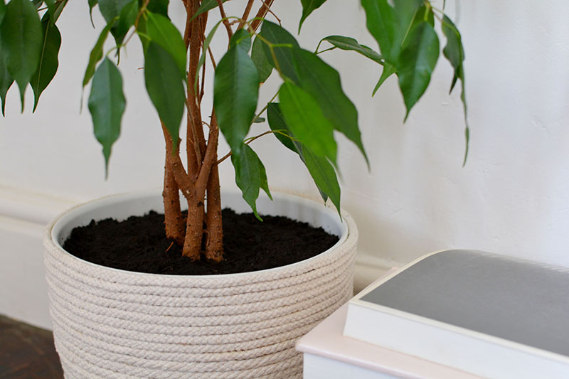 how to make a rope planter