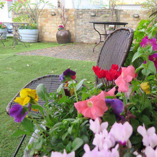 פרחים וכסאות קש בחצר של גלריית העיצוב חותם