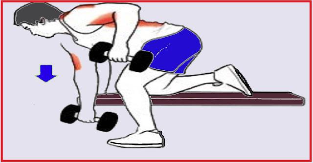 Tirage-avec-haltère-biceps