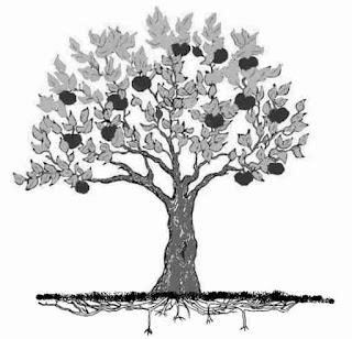 Contoh psikotest menggambar pohon