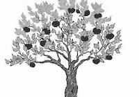 Contoh Jawaban Psikotest Menggambar Pohon Yang Benar Jelinfo