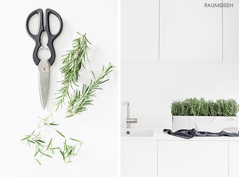 Kräuter trocknen, konservieren oder ein Kräutersalz herstellen - Vivanno