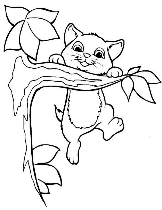 Tranh tô màu con mèo và cành cây