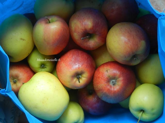 Pommes en vrac, retour de marché