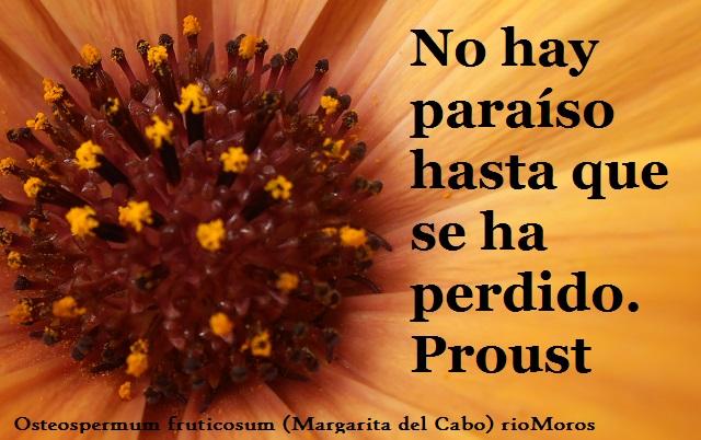 No hay paraíso hasta que se ha perdido