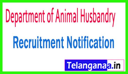 Department of Animal Husbandry Recruitment