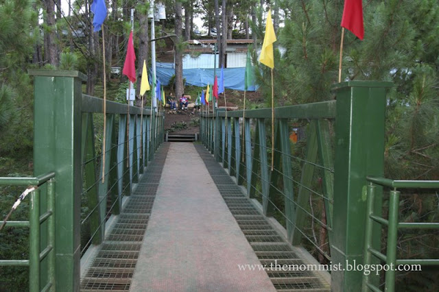 Steel bridge at Tree Top Adventure Baguio