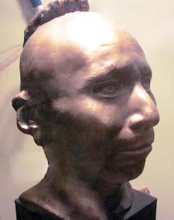 Plaster life cast of Black Hawkl