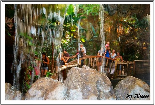 zoo-Nyiregyhaza-casa-tropicala
