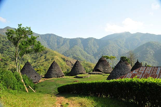 Wae Reb, Desa di Atas Awan yang Unik dan Eksotis