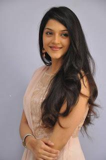 Actress Mehareen Latest Stills at Krishna Gaadi Veera Prema Gaadha Movie Thanks Meet  0005