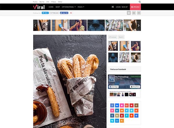 Viral Blogging WordPress Theme