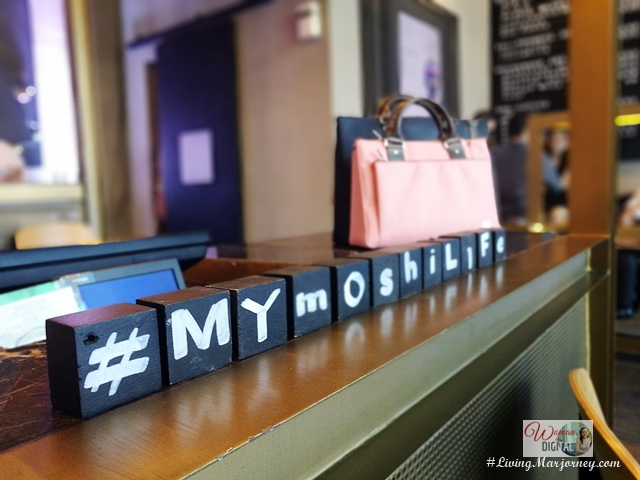 Fashionable Moshi Bags