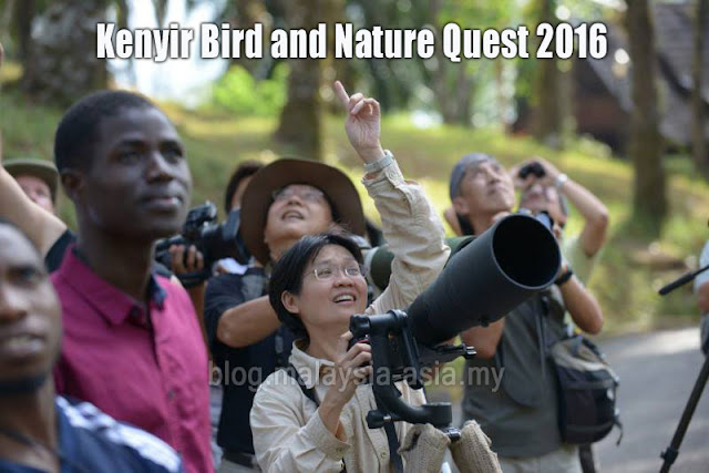 2016 Kenyir Bird and Nature Quest