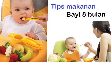 Tips Makanan Bayi 8 Bulan Agar Cepat Gemuk Pintar Clukba