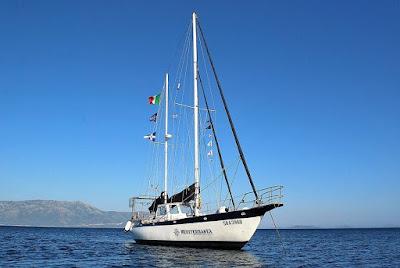 Progetto Mediterranea usa Allegro Natura