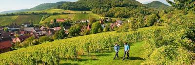 Ferienpark Bewertungen Deutschland