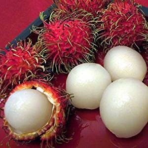 Health Benefits Of Rambutan Fruit For Diet - Healthy T1ps