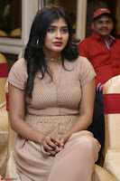 Hebah Patel in Brown Kurti and Plazzo Stuunning Pics at Santosham awards 2017 curtain raiser press meet 02.08.2017 029.JPG